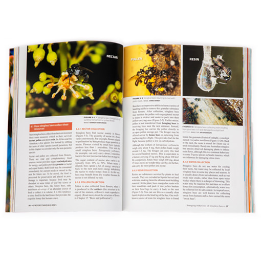 Australian-native-bee-book-spread